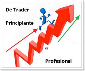 de_principiante_a_profesional